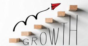 Focus your Marketing Strategy on Accelerating Organic Growth