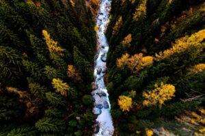 Upstream image